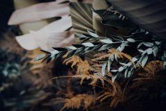 beloved-virtuell2021-jaypegphotofilm-84